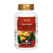 90 tabletten Hanoju Agaricus Extract