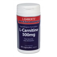 60 capsules Lamberts Performance L Carnitine 500mg